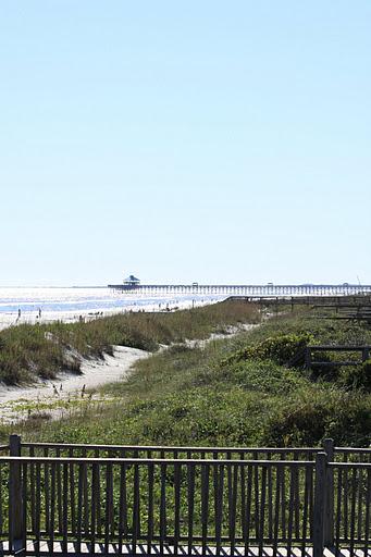 folly beach sea grass erosion control